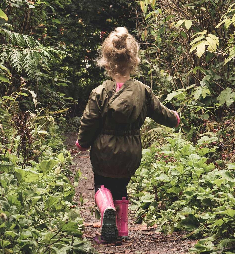 a-small-childs-walks-through-the-wilderness
